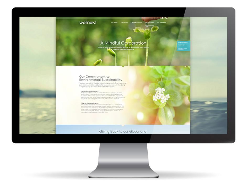 Wellnext new website desktop view