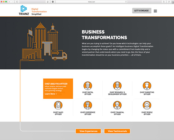 trianz business solutions